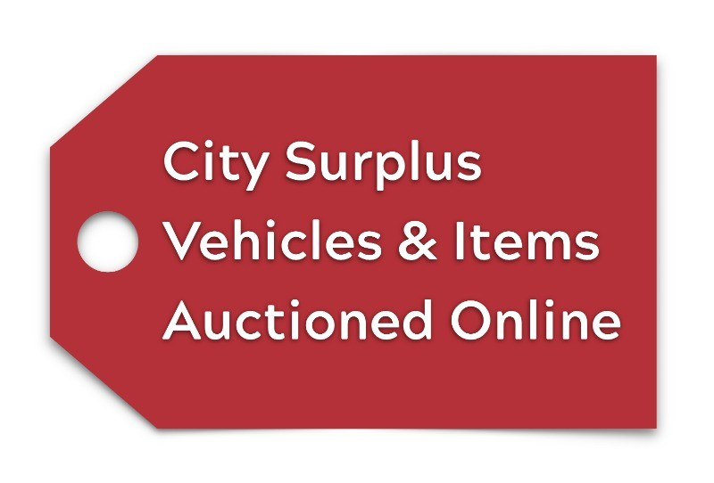 surplus auctions